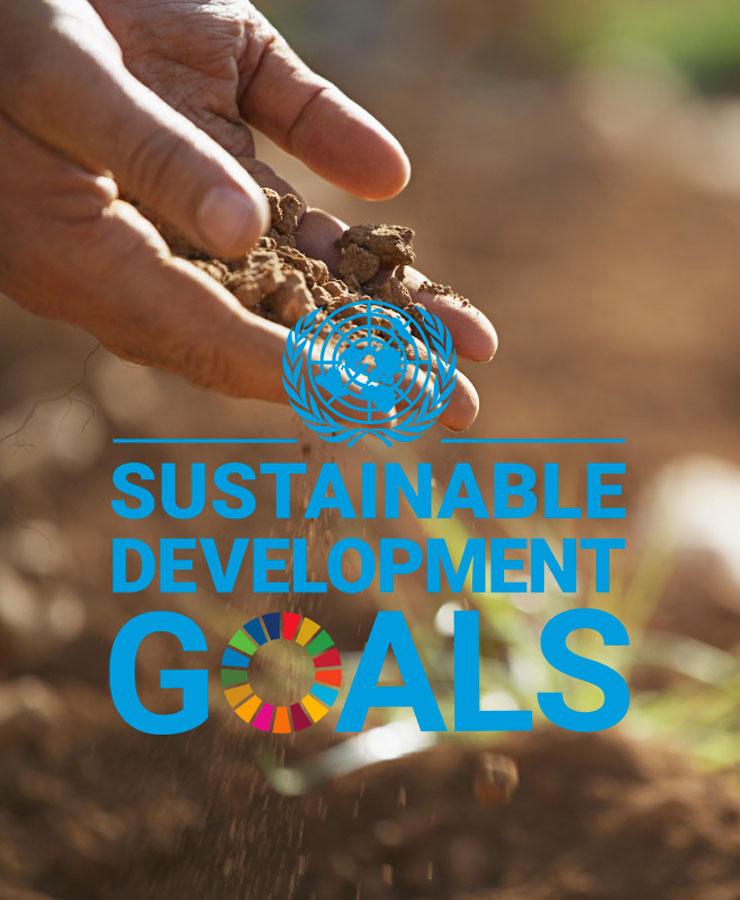 VN duurzaamheidsdoelen logo